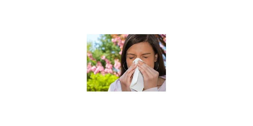 Recommendations to combat hay fever in spring high risk